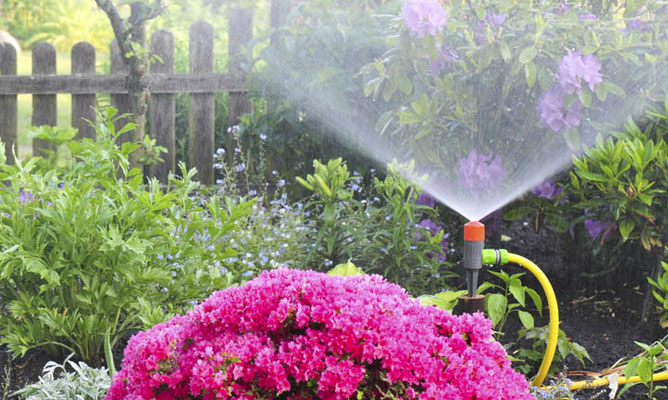 Borjardin.es: consejos de ahorro de agua
