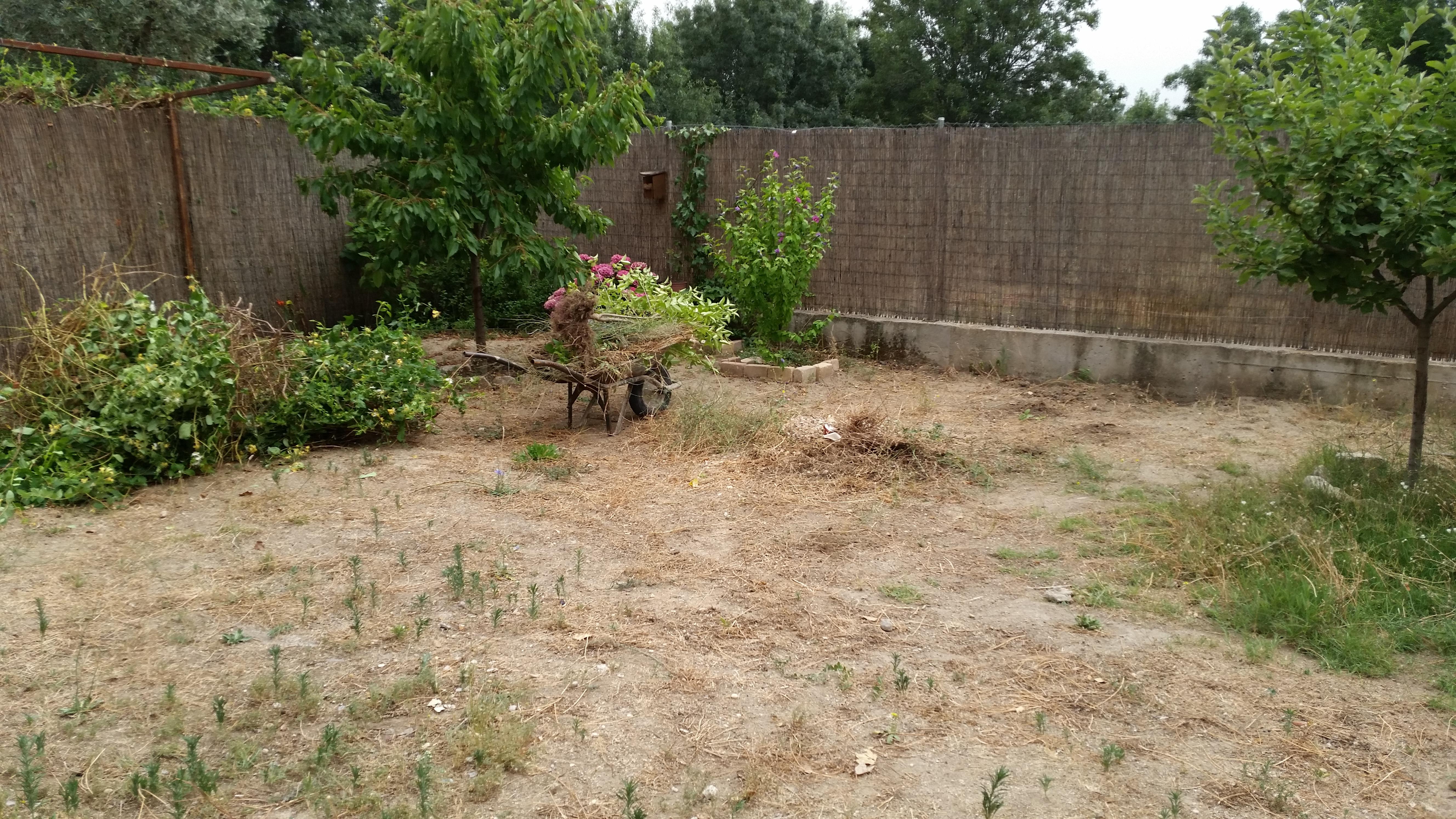 Jard n de bajo mantenimiento en fresnedillas de la oliva for Jardines de bajo mantenimiento