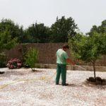 regando árboles, finalizando trabajos.