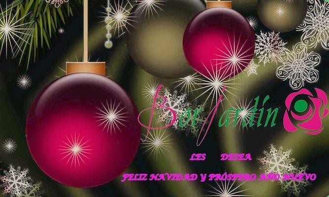Feliz Navidad- Borjardin