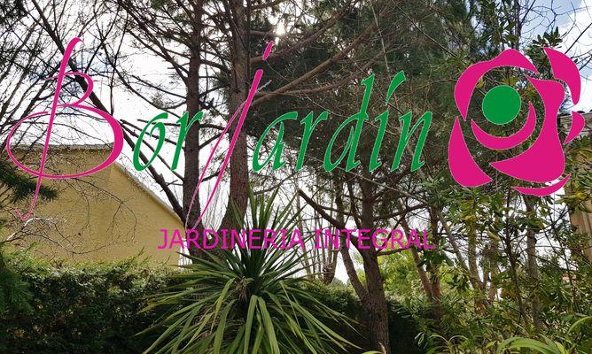 Limpieza general de jardin, valdemorillo- borjardin P