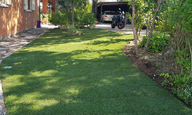 Césped Natural Valdemorillo. mantenimiento de jardín.