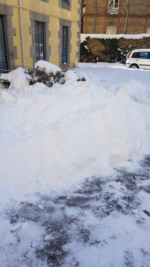 Retirada de nieve en entrada de viviendas y jardines. (3)