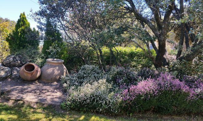 jardín mojadillas-borjardin