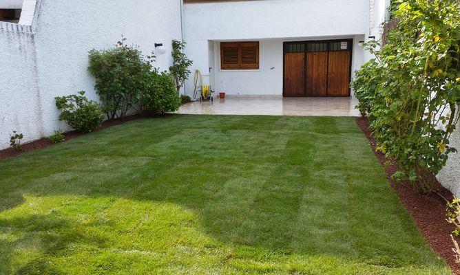 jardinería-tepes: borjardin