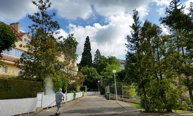 Fumigar en San Lorenzo de El Escorial